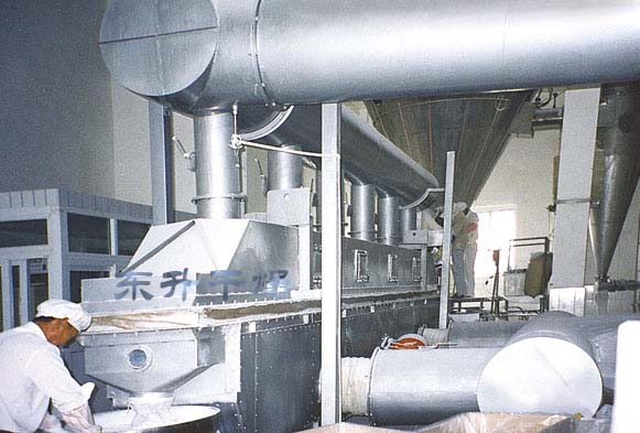 Vibrating fluidized bed